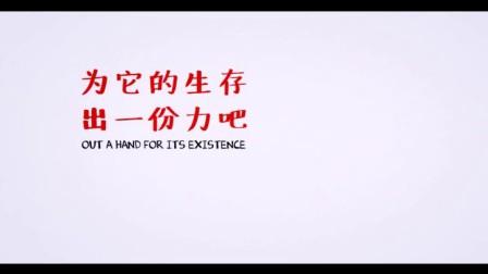 古树保护动画广告(初稿)