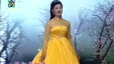 宋祖英 走进春天 1997文化部春节晚会