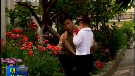 花朵美丽似罂粟 原是同科虞美人