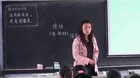 琥珀 北师大版 (小学六年级语文优质课观摩视频专辑)