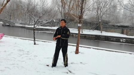 陈式太极拳一路(刘志刚)