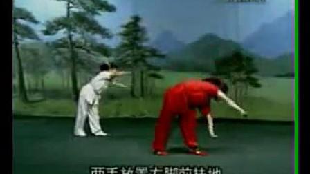 少儿武术基本功教学 侧手翻 张力慧_320x240