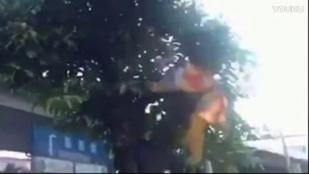 猴哥上树,这就尴尬了