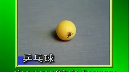 教你学葡语-体育用语-桑巴葡语翻译工作室-www.puyufanyi.com