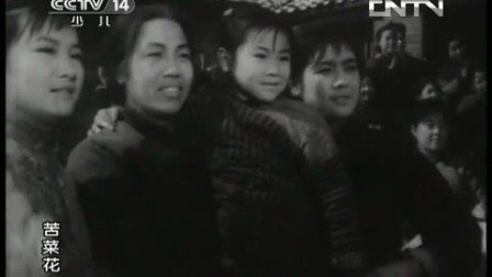 老电影 故事片 苦菜花 1080P