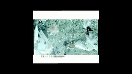 虞洋-《在空中》