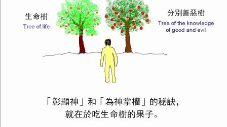 圣经简报站:创世记3章(上)