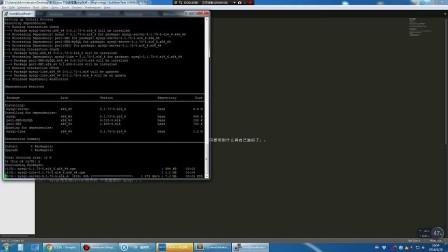 Linux建站教程-堕络's-CNIT.PRO网络信息团队