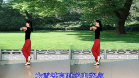 春和广场舞正面演示天路