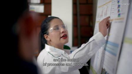 在圣戈班工作是一种怎样的体验 - 墨西哥