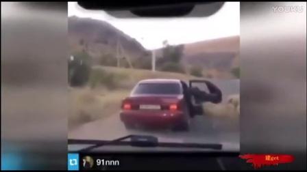 哎妈笑出腹肌!逗比开车见羊群直接开门偷羊!