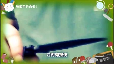 一名德国大叔测试中国的仿冒军刀,然而被吓到了