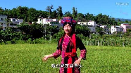 海南苗族歌曲--打蝗虫