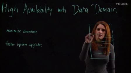 Data Domain的高可用性