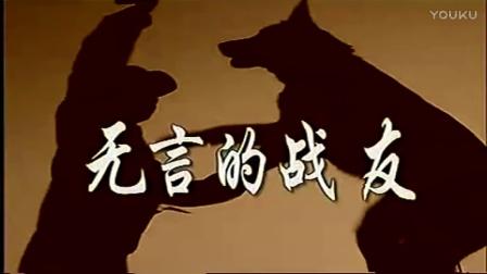 英国斗牛犬有什么缺点-教猎狐犬十条好方法