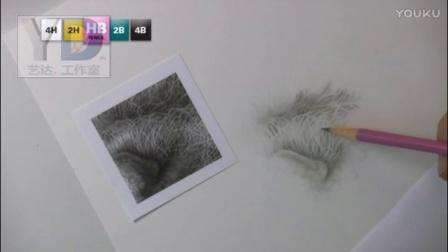 【艺达】彩铅大师分享教程 --大师笔下的白胡子