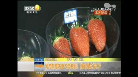 """西安营养学会委员程雅珊接受陕台《第一新闻》采访""""草莓是否有农药残留"""""""
