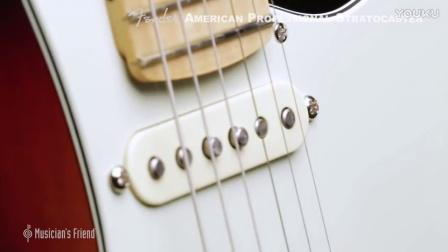 谷估堂 Fender American Professional Stratocaster