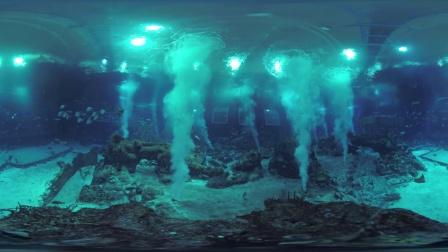 圣淘沙名胜世界 - 邂逅海洋生物