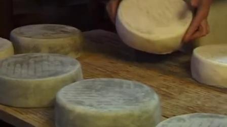 欧洲奶牛场奶酪制作现场视频