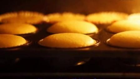 家庭蛋糕的制作方法 五仁月饼的做法 中华特色小吃技术配方大全