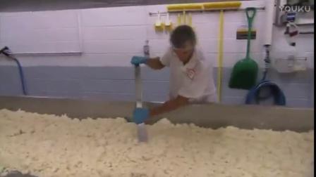 大理石切达奶酪车达乳酪工厂流水线生产过程 makes Marble Cheddar Cheese