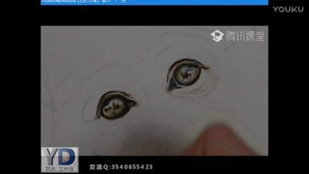 【艺达】零基础入门教程——彩铅动物猴子的画法