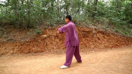 马师兄——马建华太极拳老架一路视频