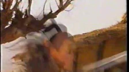 饮马流花河1996  12