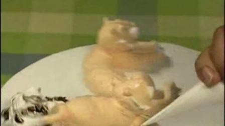 巧克力芝士蛋糕 烤箱烤面包 皇冠蛋糕