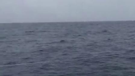 2017第八届海帆赛长航03