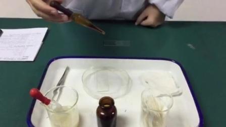 B制作酵母菌细胞临时装片