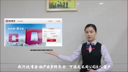 湖北银行应城支行形象宣传片(2017)