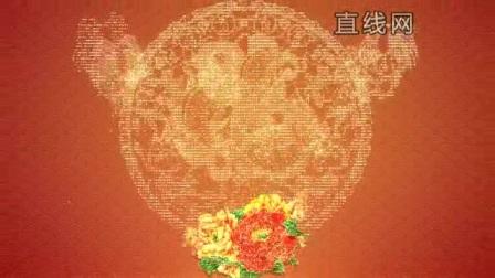 大气元宵节花开富贵黄金粒子鸡年剪纸图案开场片头模板