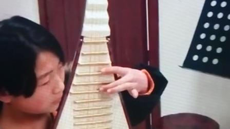 甘肃省庆阳市西峰区小朋友练琴片段