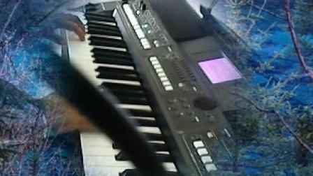 S670电子琴弹唱【女人是水男人是山】