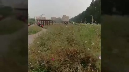 XiaoYing_Video_1488696188791
