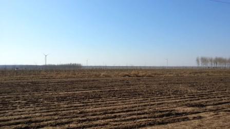 大庆新建风力发电群