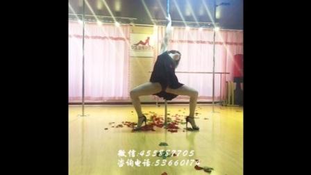 钢管舞 爵士舞 肚皮舞 【北京迪薇舞蹈培训】