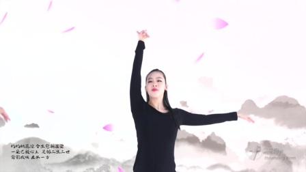 王广成中国健身舞广场舞系列 凉凉 杨宗纬 张碧晨