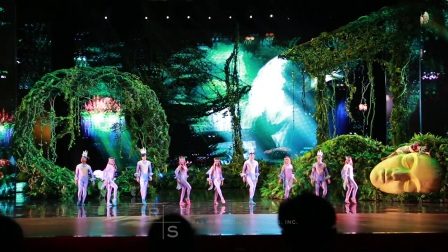 Illusion Show China