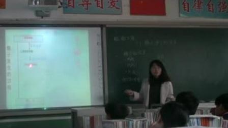 赵县马思茹 2014012412高二生物胚胎工程