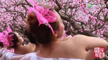 陕州过村十里桃花惊现众多桃花仙子,美翻了!