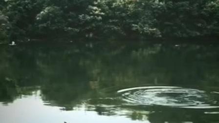江西二炮手大战天然水库大鲢鱼
