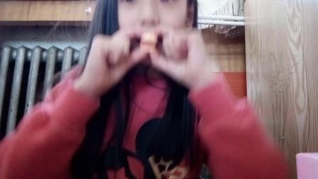 品尝日本汉堡橡皮糖