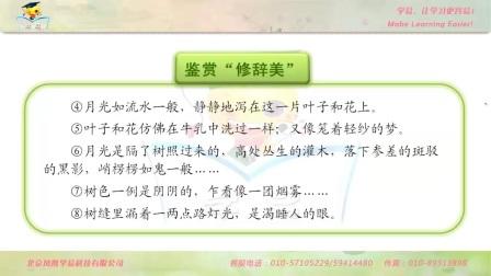高一语文王敦宏必修二第一单元第三讲荷塘月色下成品