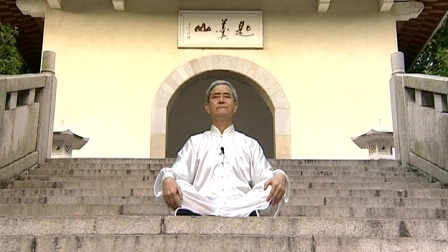 第十势垂帘守窍功(上丹田).VOB