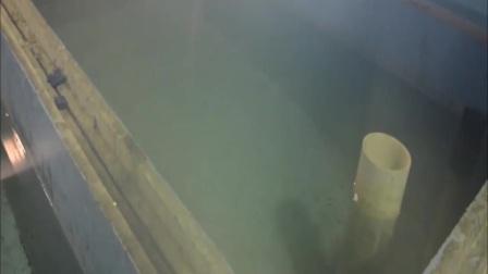 生态养鱼 池塘养鱼 室内养鱼