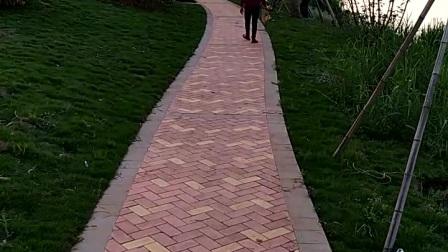 小区绿道散步景观