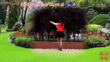 欣子广场舞放下爱情放不下你原创编舞欣子超清